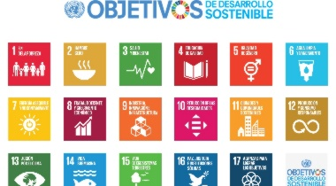 ¿Qué son los Objetivos de Desarrollo Sostenible de la ONU?